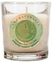 """Voňavky, Parfémy, kozmetika Vonná sviečka """"Osviežujúca"""" - Flagolie Fragranced Candle Refreshing Peace"""