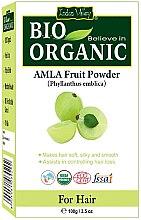 "Voňavky, Parfémy, kozmetika Ovocný prášok ""Amla"" - Indus Valley Bio Organic Amla Fruit Powder"