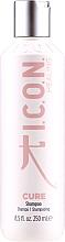 Voňavky, Parfémy, kozmetika Regeneračný šampón na vlasy - I.C.O.N. Cure Recovery Shampoo