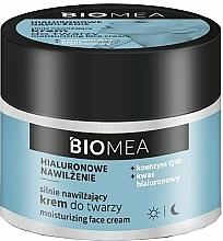 Voňavky, Parfémy, kozmetika Hydratačný denný a nočný pleťový krém s koenzýmom Q10 - Farmona Biomea Moisturizing Face Cream