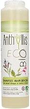 Voňavky, Parfémy, kozmetika Šampón proti lupinám - Anthyllis Anti Dandruff Shampoo