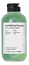 """Voňavky, Parfémy, kozmetika Šampón """"Prírodné bylinky"""" - Farmavita Back Bar No4 Revitalizing Shampoo Natural Herbs"""
