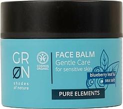 Voňavky, Parfémy, kozmetika Balzam na tvár - GRN Pure Elements Blueberry & Sea Salt Face Balm