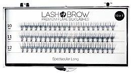 Voňavky, Parfémy, kozmetika Falošné riasy - Lash Brown Premium Flare Silk Lashes Spectacular Long