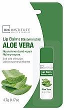 """Voňavky, Parfémy, kozmetika Balzam na pery """"Aloe vera"""" - IDC Institute Lip Balm Aloe Vera"""