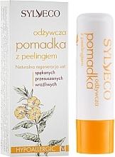 Voňavky, Parfémy, kozmetika Vyživný rúž so scrubom - Sylveco Rich Exfoliating Lip Balm