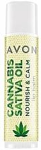 Voňavky, Parfémy, kozmetika Balzam na pery s konopným olejom - Avon Cannabis Oil Lip Balp