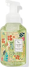 Voňavky, Parfémy, kozmetika Mydlo a pena na ruky Cucumber Melon - Bath and Body Works Cucumber Melon Gentle Foaming Hand Soap