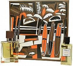 Voňavky, Parfémy, kozmetika Hermes Terre d'Hermes Eau Intense Vetiver Set - Sada (edp/50ml +sh/gel/40ml)