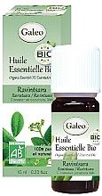 Voňavky, Parfémy, kozmetika Organický éterický olej Ravintsara - Galeo Organic Essential Oil Ravintsara