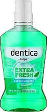 Voňavky, Parfémy, kozmetika Ústna voda - Dentica Dental Protection Mint Fresh