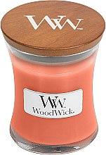Voňavky, Parfémy, kozmetika Vonná sviečka v pohári - WoodWick Tamarind & Stonefruit Candle
