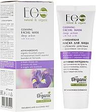 Voňavky, Parfémy, kozmetika Čistiaci maska na tvár - ECO Laboratorie Cleansing Facial Mask With Fruit Acids