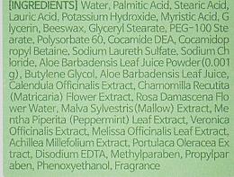 Čistiaca pena na umývanie s extraktom z aloe - Lebelage Aloe Cleansing Foam — Obrázky N2