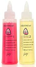 Voňavky, Parfémy, kozmetika Stabilizátor farby s keratínom - Vitality's Aqua After-colour Keratin Treatment