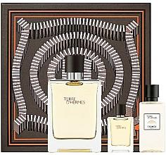 Voňavky, Parfémy, kozmetika Hermes Terre D'Hermes - Sada (edt/100 ml + ash/40 ml + edt/5 ml)