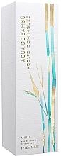Voňavky, Parfémy, kozmetika Adolfo Dominguez Agua de Bambu - Toaletná voda
