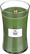 Voňavky, Parfémy, kozmetika Vonná sviečka v pohári - WoodWick Hourglass Candle Evergreen Conifere