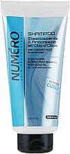 Voňavky, Parfémy, kozmetika Šampón na vlnité vlasy s olivovým olejom - Brelil Numero Elasticizing Shampoo