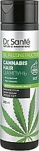 Voňavky, Parfémy, kozmetika Šampón na vlasy - Dr. Sante Cannabis Hair Shampoo