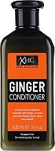 """Voňavky, Parfémy, kozmetika Vlasový kondicionér bez obsahu síranov """"Zázvor"""" - Xpel Marketing Ltd Ginger Conditioner"""