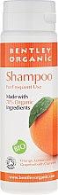 Voňavky, Parfémy, kozmetika Šampón pre každodenné použitie - Bentley Organic Shampoo For Frequent Use