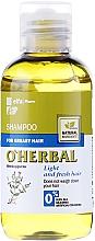Voňavky, Parfémy, kozmetika Šampón na mastné vlasy s extraktom mäty - O'Herbal