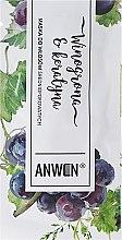 Voňavky, Parfémy, kozmetika Maska pre stredne pórovité vlasy - Anwen Medium-Porous Hair Mask Grapes and Keratin (vzorka)