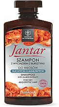 Voňavky, Parfémy, kozmetika Šampón pre suché a krehké vlasy s jantárovým extraktom - Farmona Jantar Moisturizing Shampoo
