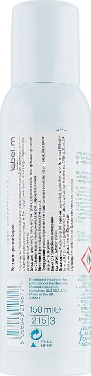 Vyhladzujúci sprej - Label.m Anti-Frizz Mist — Obrázky N2