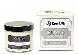 """Voňavky, Parfémy, kozmetika Vonná sviečka """"Sip of Freshness"""" - Eco Life Candles"""