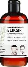 """Voňavky, Parfémy, kozmetika Šampón-elixír na vlasy """"Eukalyptus a rozmarín"""" - WS Academy Eukaliptus & Rozmaryn Elixir Wash"""