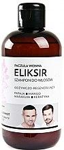 "Voňavky, Parfémy, kozmetika Elixírový šampón na vlasy ""Pačuli"" - WS Academy Patchouli Elixir Wash"