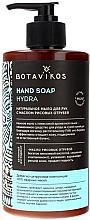 Voňavky, Parfémy, kozmetika Tekuté mydlo na ruky s ryžovým otrubovým olejom - Botavikos Hydra Hand Soap