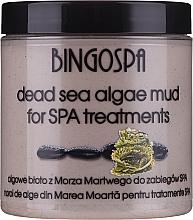 Voňavky, Parfémy, kozmetika Bahenná maska s riasami z Mŕtveho mora - BingoSpa