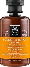 Voňavky, Parfémy, kozmetika Obnovujúci a vyživujúci šampón s olivovým olejom a medom - Apivita Nourish And Repair Shampoo With Olive And Honey