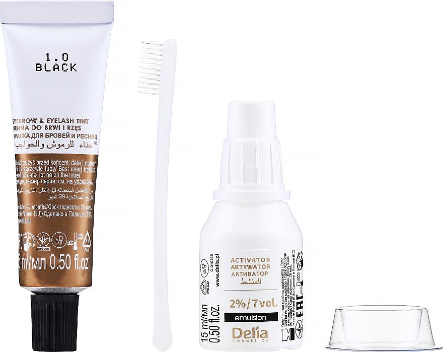 Gél-farba na obočie, čierna - Delia Eyebrow Tint Gel ProColor 1.0 Black — Obrázky N2