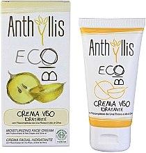 Voňavky, Parfémy, kozmetika Zvlhčujúci krém pre tvár - Anthyllis Moisturizing Face Cream