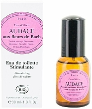 Voňavky, Parfémy, kozmetika Elixirs & Co Audace Of Bach - Toaletná voda