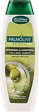 Voňavky, Parfémy, kozmetika Šampón na vlasy - Palmolive Naturals Long & Shine Shampoo