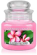 "Voňavky, Parfémy, kozmetika Aromatická sviečka ""Blooming Plumeria"" (tuba) - Country Candle Blooming Plumeria"