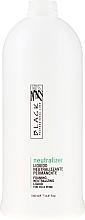 Voňavky, Parfémy, kozmetika Neutralizátor-fixátor - Black Professional Line Neutralizer