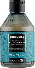 Voňavky, Parfémy, kozmetika Šampón na regeneráciu vlasov - Black Professional Line Turquoise Hydra Complex Shampoo
