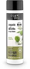 """Voňavky, Parfémy, kozmetika Šampón na vlasy """"Obnovenie. Marocká princezná"""" - Organic Shop Organic Olive and Argan Oil Repair Shampoo"""