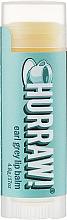 Voňavky, Parfémy, kozmetika Balzam na pery Earl Grey - Hurraw! Earl Grey Lip Balm