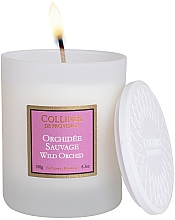 Voňavky, Parfémy, kozmetika Vonná sviečka Divoká orchidea - Collines De Provence Wild Orchid Scented Candle