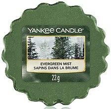 Voňavky, Parfémy, kozmetika Aromatický vosk - Yankee Candle Evergreen Mist Wax Melts