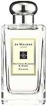 Voňavky, Parfémy, kozmetika Jo Malone Nectarine Blossom and Honey - Kolínska voda (tester s viečkom)